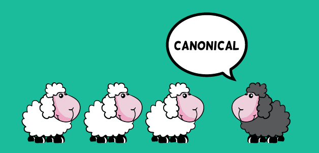 تگ کنونیکال چیست؟ | آموزش استفاده از canonical
